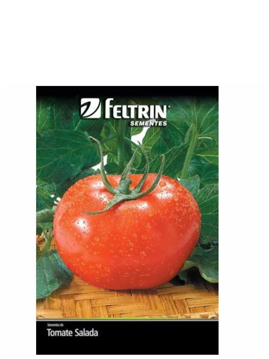 Semente de Tomate Gaúcho Feltrin Ref. 7171